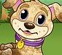 Speel het nieuwe girl spel: Puppy Speeldag