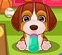 Speel het nieuwe girl spel: Puppy Zorg