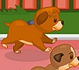 Play the new Girl Flash Game: Puppy Hurdling