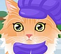 Play the new Girl Flash Game: Groom That Kitty