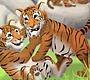 Play the new Girl Flash Game: Tiger Nursery