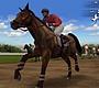 Speel het nieuwe girl spel: Paarden Race