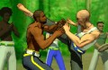 Spiel: Capoeira Fighter 2
