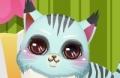 Gioca il nuovo gioco: Kitty Casa Maker