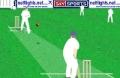 Graj w nową grę: World Cup Cricket