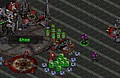 New Game: Starcraft Flash RPG