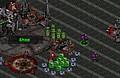 Jugar un nuevo juego: Starcraft Flash RPG